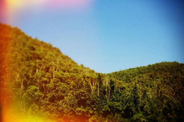 tim-coulson=photographer-bush-wedding-sydney-amazing-creek-river-country