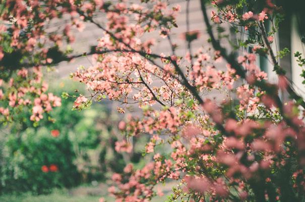 black-wedding-dress-sequins-backyard-outdoor-elegant-garden-inspiration14