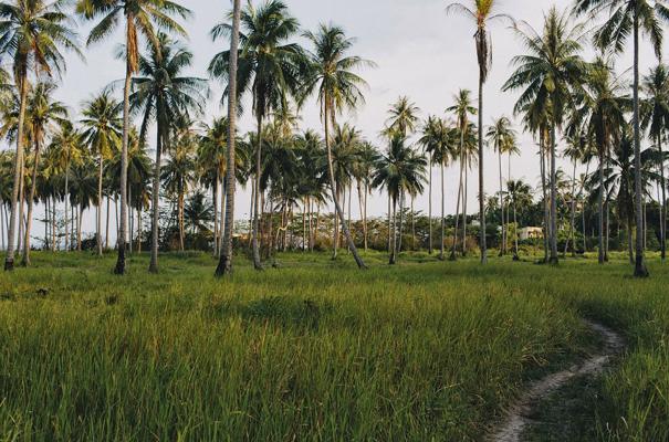 Thailand-koh-samui-wedding-eric-ronald-DIY-stationery-iinspiration-destination-bride63