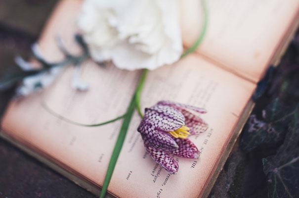 boho-bride-succulents-wedding-greenery-cakes-styling-inspiration-marion14