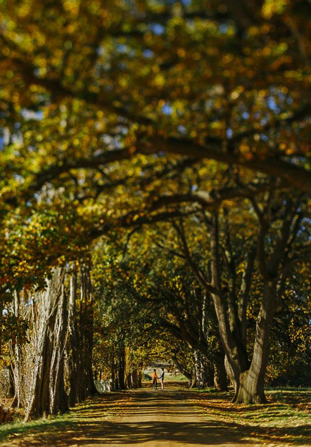 tasmanian-wedding-photographer-autumn-wedding-orange