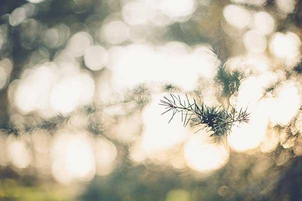 Gina-&-Ryan-Photography---015
