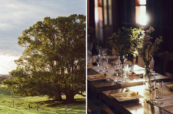 queensland-wedding-photographer-barn-garden-party-reception35