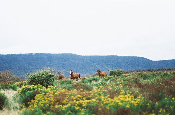james-bennett-photography-ballarat-bush-country-australian-wedding40