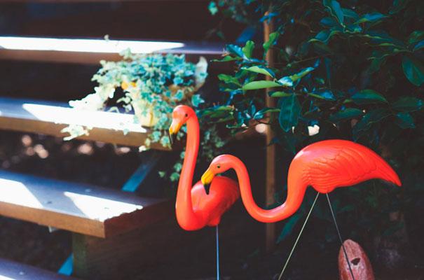 mexican-bright-fiesta-wedding-backyard-lace-bride-queensland2