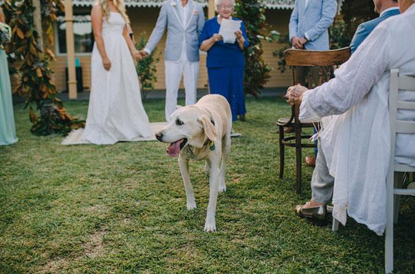 carla-zampatti-bride-country-nsw-wedding21
