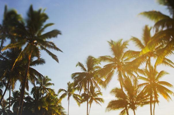 indian-fiji-weddingisland-destination
