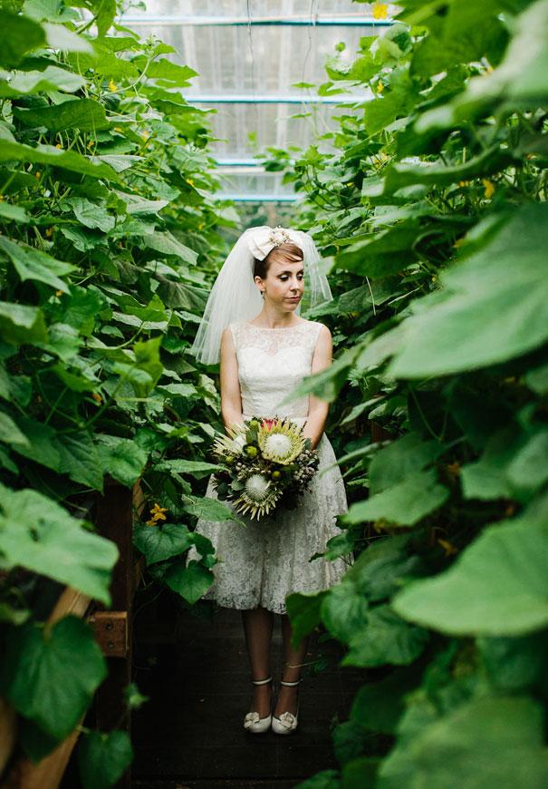 queensland-koala-bush-australiana-kitsch-retor-bride-wedding14