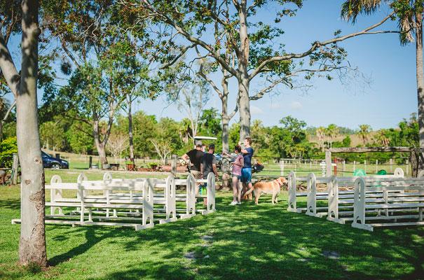 country-bush-australian-backyard-diy-wedding-sequin-silver-bridal-gown3