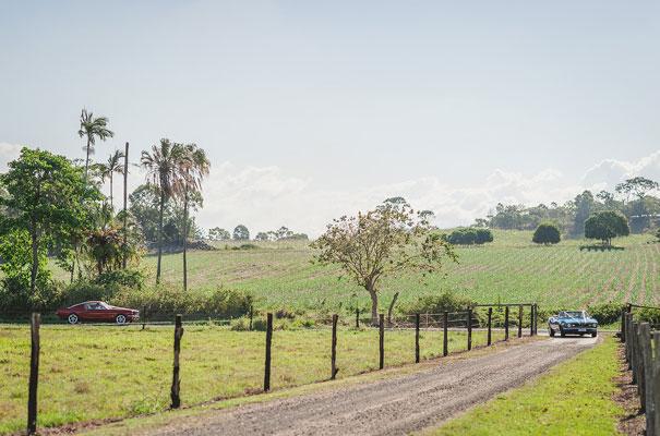 country-bush-australian-backyard-diy-wedding-sequin-silver-bridal-gown30