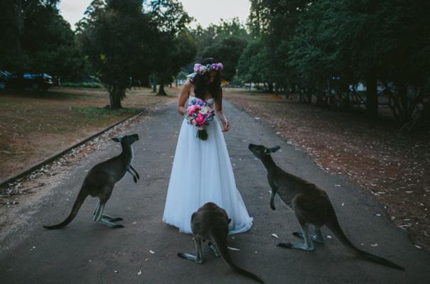 perth-west-australian-kangaroo-wedding-flowers-photographer-inspiration35