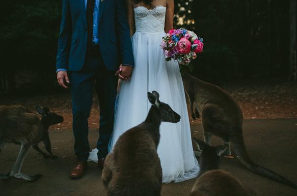 perth-west-australian-kangaroo-wedding-flowers-photographer-inspiration37