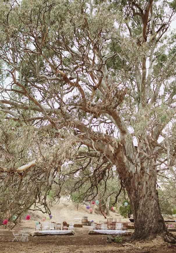 south-australian-wedding-photographer-scanlan-theodore-bride