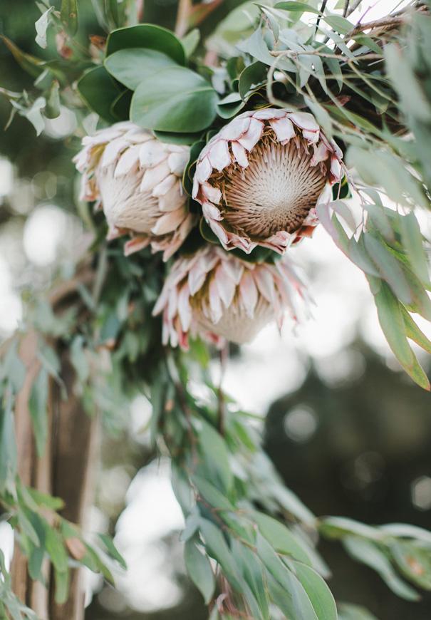 NZ-yeah-weddings-collective-Perth-wedding-photographer9