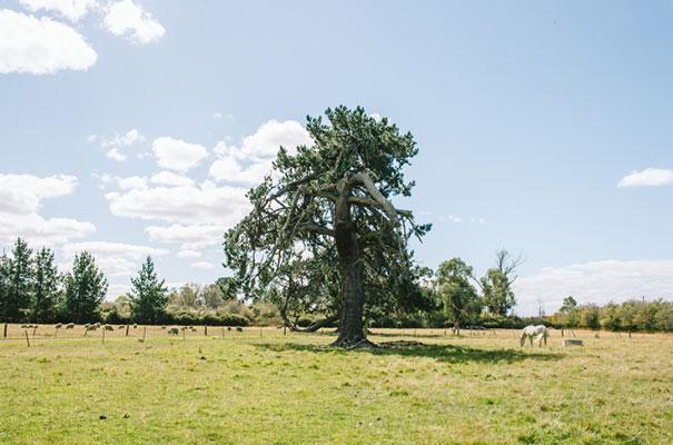 barn-country-farm-wedding-rue-de-seine-bridal-gown9