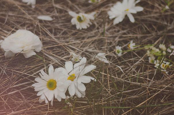 daisies-blonde-jumpsuit-lace-bride11