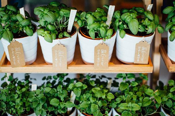 wedding-favour-ideas-inspiration-DIY-jars-plants9