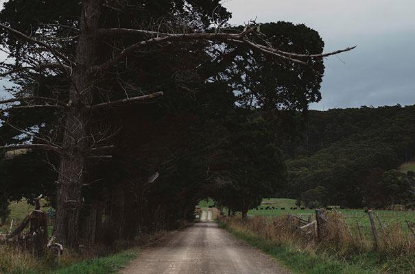 eric-ronald-industrial-tasmania-wedding11