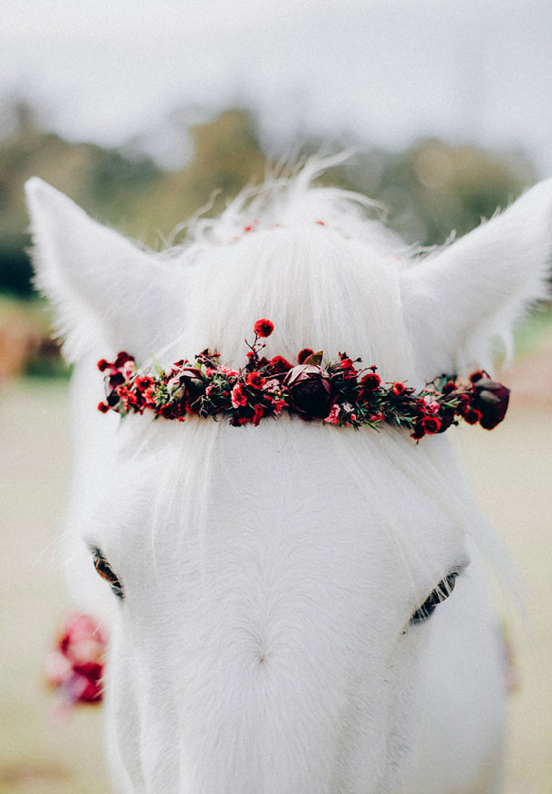 black-wedding-dress-red-flowers-white-horse-floral-crown3