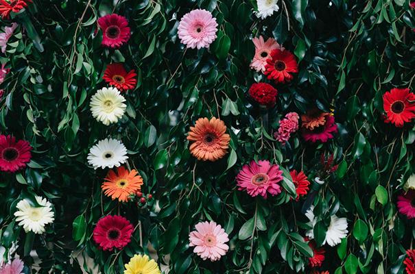 veggie-green-eco-backyard-wedding-inspiration10
