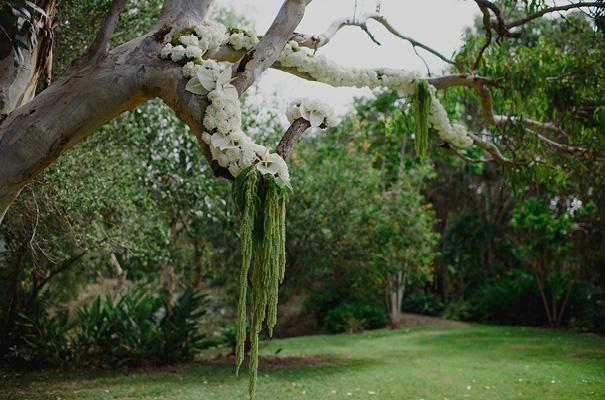 barney-kate-david-moore-photography-wedding7