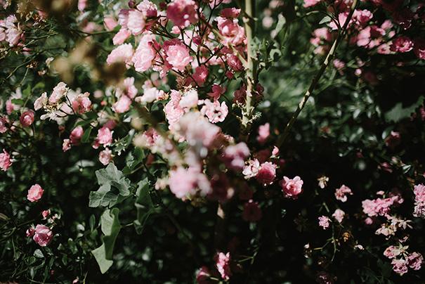 2015_09_01-0090_Aleisha_Simon