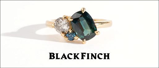 Black Finch